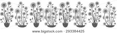 Modern Elegant Floral Seamless Vector Border In Black And White On White Background. Hand Drawn Flow