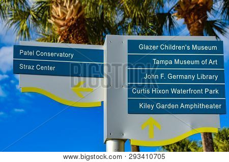 Tampa Bay, Florida. March 02, 2019 Top View Of Streetsign And Palm Trees In Downtown Area .