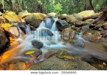 Water fall and rock