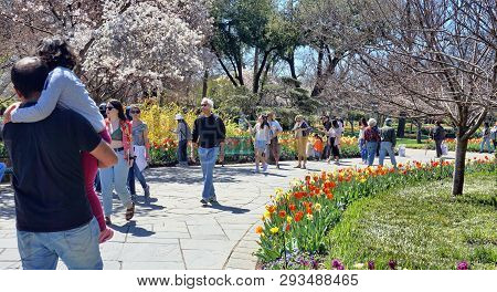 Dallas,texas- March 18,2019 - Young Familys On A Nice Day In Spring Exploring The Dallas Arboretum G