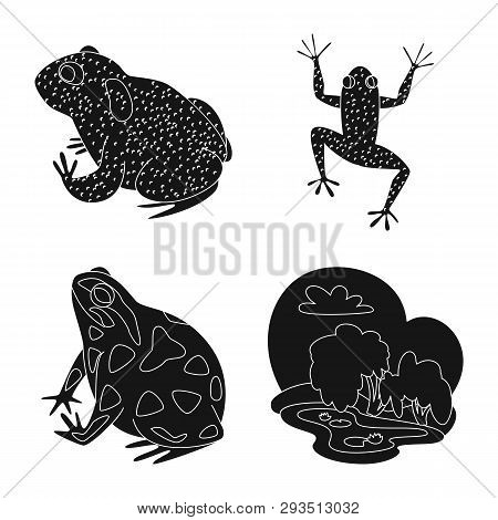 Isolated object of fauna and reptile logo. Collection of fauna and anuran stock vector illustration. poster