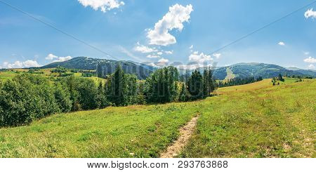 Panorama Of Beautiful Countryside In Mountains. Trees On A Grassy Meadow On A Sunny July Day. Ridge