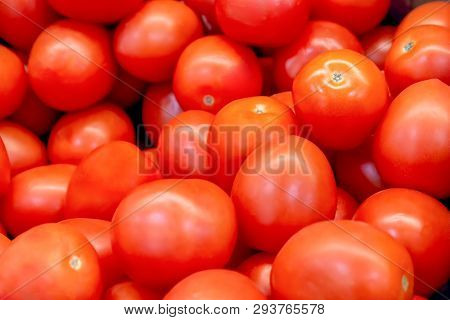 Red Tomatoes. A Lot Of Tomato. Red Vegetables. Ripe Tomatoes. Mountain Tomato Healthy Food. Crop Of