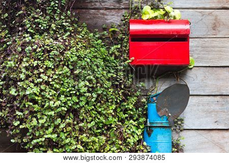 Red Mailbox On Wooden House Wall With Leaf