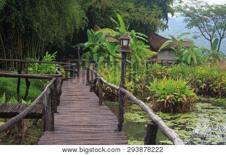 Closeup Bamboo Way Wooden Bridge And Pond