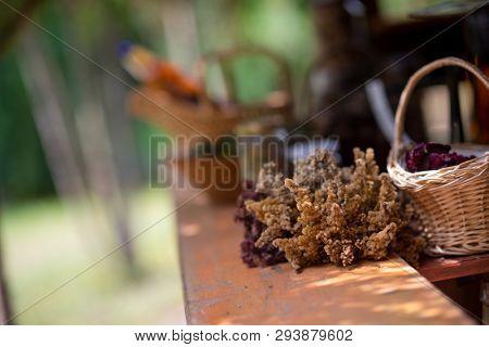 herbalist workshop with bottles and healing herbs