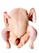 Photo of a raw chicken a over white background poster