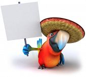 Mexican parrot poster