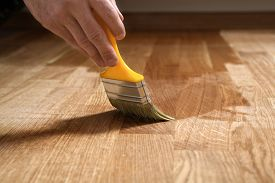 Varnishing Lacquering Parquet Floor By Paintbrush - Second Layer. Home Renovation Parquet. Varnish P
