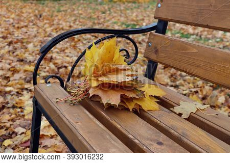 A Bouquet Of Autumn Maple Leaves Lies On A Bench In The Old Park, Close - Up-the Concept Of Farewell