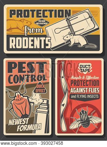 Pest Control Insects And Rodents Extermination Service, House Disinsection. Vector Flies, Rats, Mice