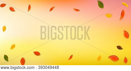 Falling Autumn Leaves. Red, Yellow, Green, Brown Neat Leaves Flying. Vignette Colorful Foliage On Pr