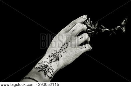 Flower Branch And The Girl's Mehndi Hand