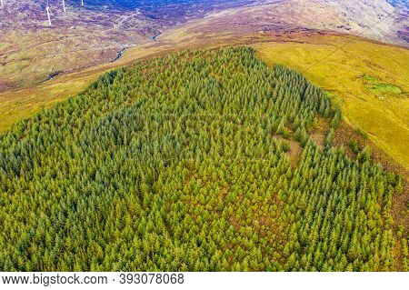 Amazing Aerial Of Forest In County Donegal - Ireland