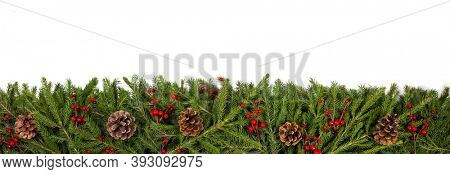 Christmas white blank card with copy space and frame decor of fir tree branch cones red holly berry isolated on white background