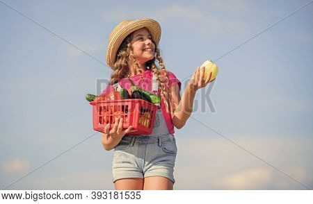 Child Carry Harvest Sky Background. Crops Harvest. Harvest Season. Vegetables In Basket. Girl Adorab