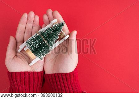 First Person Top Above Overhead Close Up View Photo Of Female Hands Holding Getting As A Present Sma