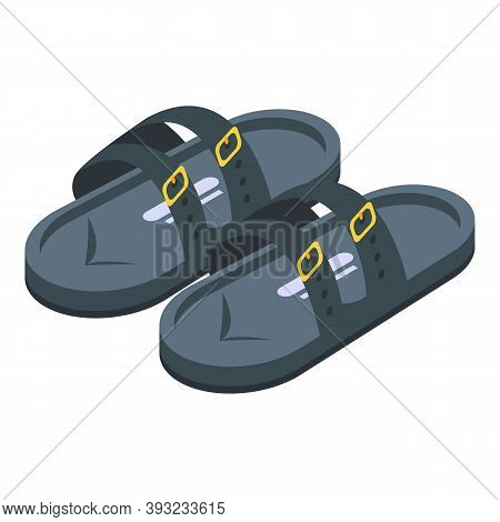Flop Sandals Icon. Isometric Of Flop Sandals Vector Icon For Web Design Isolated On White Background