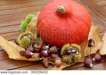Chestnuts, Husk, Oak, Pumpkin And Dead Leaves On A Table After Harvest During Autumn