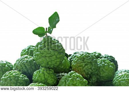 Bergamot With Green Leaves Isolated On A White Background.
