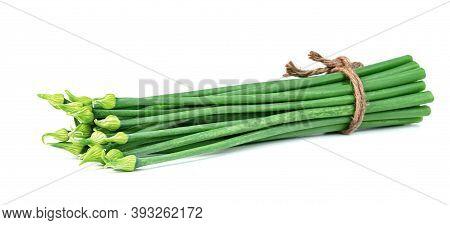 Scallion Flower Or Allium Cepa Or Onion Flower Stem Isolated On White Background