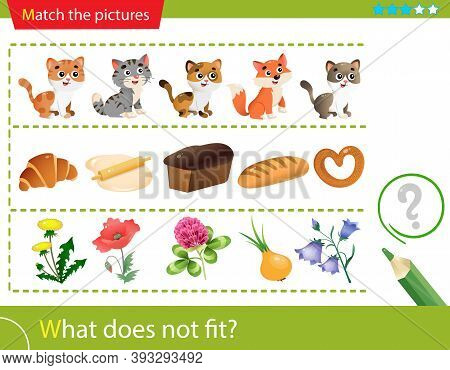 Logic Puzzle For Kids. What Does Not Fit? Cats. Bakery Products. Flowers. Matching Game, Education G