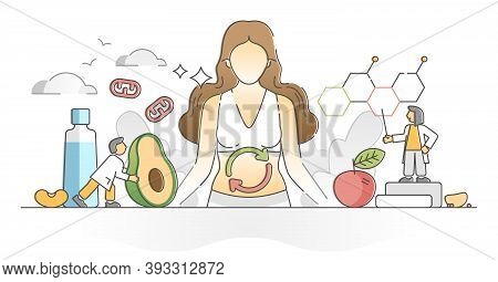 Metabolism Chemical Reaction As Food Conversion To Energy Outline Concept. Digestive System Proteins