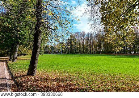 Beautiful Autumn Alley. Autumn Royal Park. Beautiful Autumn Alley. Beautiful Path Between Trees.