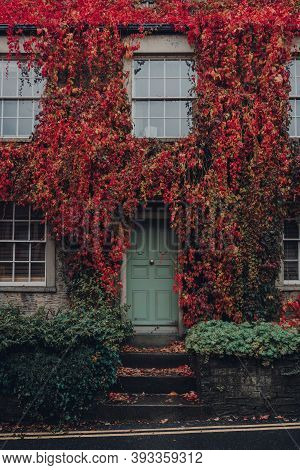 Red And Yellow Foliage Over The Old Stone House In Frome, Somerset, Uk.