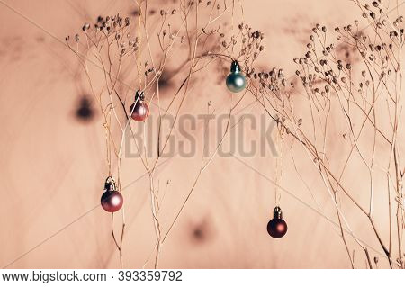Christmas Eco Friendly Composition Without Xmas Tree. Alternative Christmas Tree. Home Interior Flor