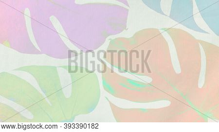 Colorful Monstera leaves on light green background