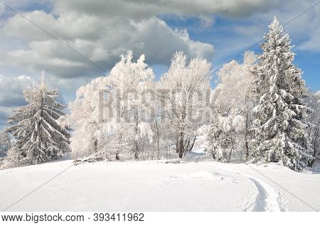 Footpath In Winter Landscape In Bavarian Forest,bavaria,germany
