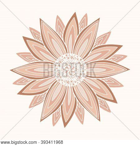 Vector Illustration Of Delicate Pink Dahlia Or Sunflower Flower. Spring Flower Isolated On White Bac