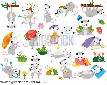 Possum Clipart Set. Cute Cartoon Possum Characters In Various Poses.