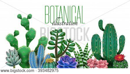 Cactus Composition With Editable Ornate Text And Images Of Cactus Plants Of Different Species And Sh