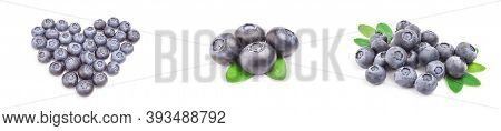 Collage Of Great Bilberry Isolated On A White Background