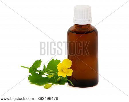 Pharmaceutical Bottle With Celandine Extract, Chelidonium Majus