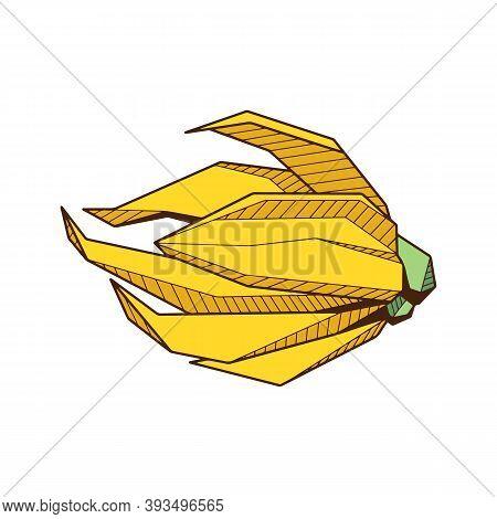 Colored Hand Drawind Geometrical Flower Bud, Ylang-ilang Bud Line Art