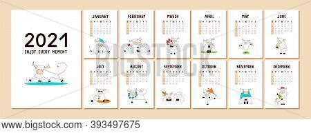 Calendar Or Planner A4 Format With A Cute Kawaii White Ox, Bull, Cow. Happy New Year 2021. Cover And