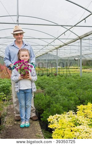 Little girl holdiong flower pot standing with her granddad in the greenhouse