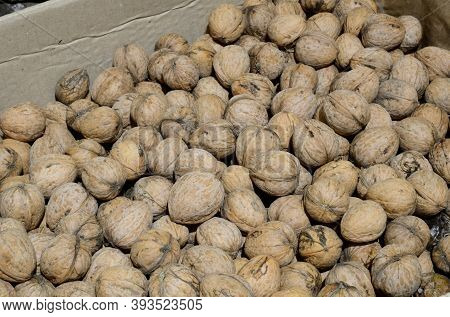 Harvested From Walnuts In A Cardboard Box.