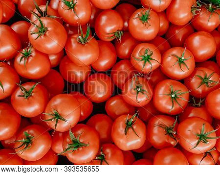 Lots Of Red Fresh Tomatoes. Healthy Food And Vegetables.