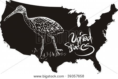 Limpkin And U.s. Outline Map
