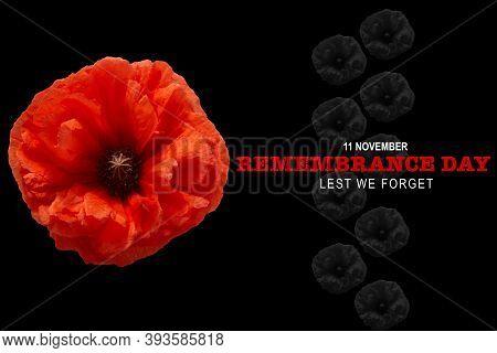 Remembrance Day Banner. Poppy Flower On Black Background.