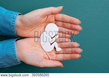 Female Hands Hold A Paper-cut Silhouette Of A Fetus. Green Background. Flay Lay. Close Up. Concept O