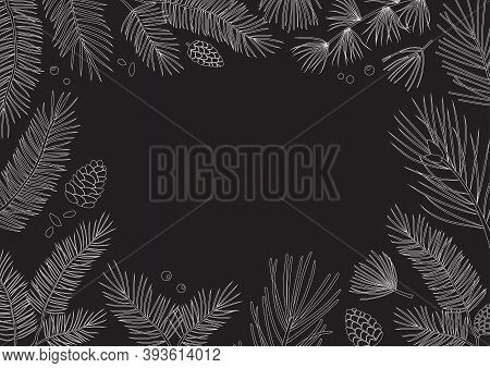 Christmas Vector Card Or Invitation, Vintage Frame, Winter Holiday Background. Tree Branches, Fir An