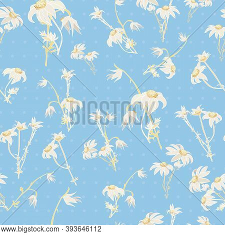 Blue Flannel Flower Vector Repeat Pattern Background With White And Yellow Flowers