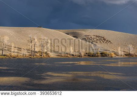 Amazing Autumn View Of A Lake With Dark Water, Poplars With Flying Leaves On The Shore, A Car And A