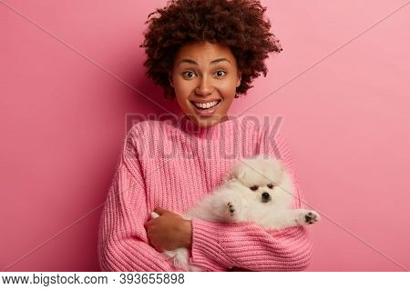 Joyful Ethnic Girl Finds Lovely Miniature Dog On Street, Being Owner Of Her Four Legged Friend, Has