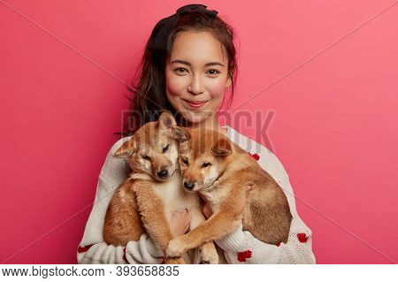 Young Woman Adores Dogs, Plays With Two Little Shiba Inu Puppies, Teaches Them To Perform Some Actio
